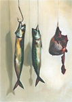 Hanging Fish and Sheep's Heart